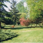 Gite de la Métairie - Votre mariage en Sarthe - Le parc paysagé