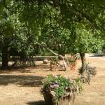 Gîte de La Métaire - Votre mariage en Sarthe - Accès